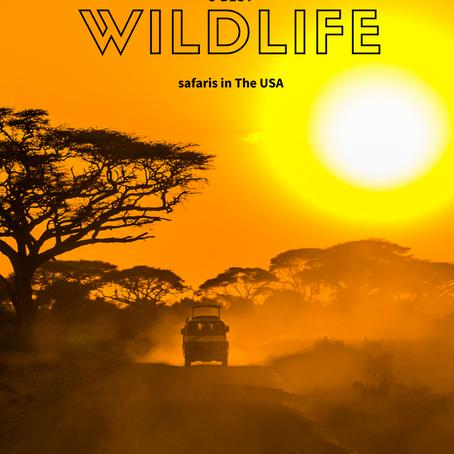 5 melhores safaris nos Estados Unidos