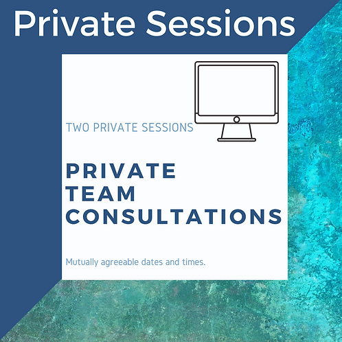 TWO Private Team Consultations