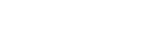 eyebrow-feather-white.png