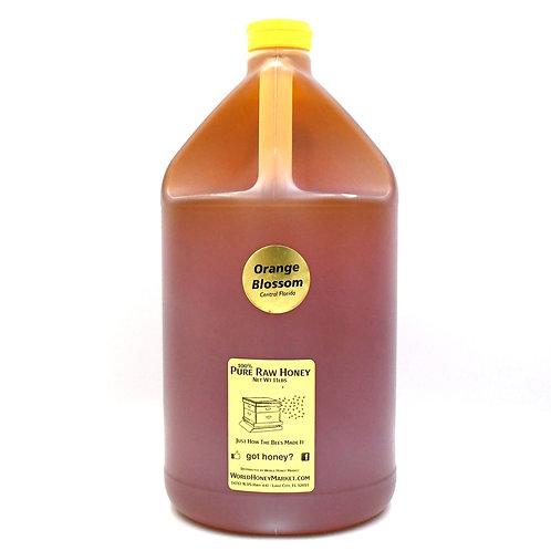 RAW Florida Orange Blossom Honey 100%  Natural Pure (1 gallon 11lb jug)