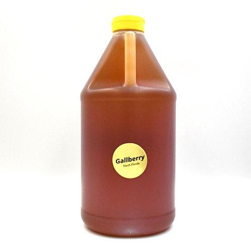 1/2 Gallon of Pure Raw Gallberry Honey