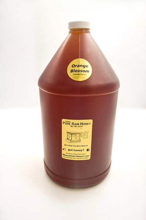 RAW Florida Orange Blossom Honey 100%  Natural Pure (1 gallon 11lb jug)
