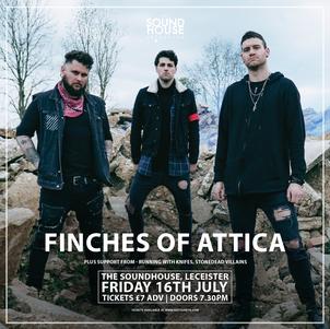 Finches of Attica + Support