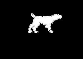 Nosam Vizsla Logo