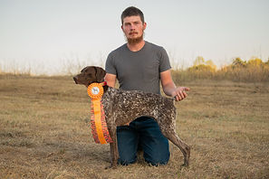 AKC German Shorthaired Pointer
