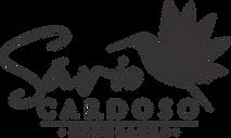 Nova Logo Savio.png