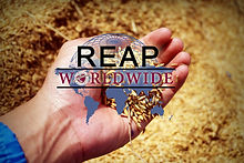 REAP Worldwide cover page.jpg