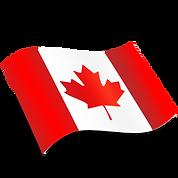 logo flag 2.png