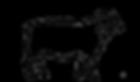 Logo Schaf.png