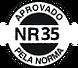 selo-nr35.png
