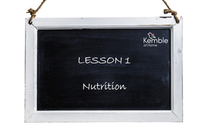 A Key Characteristics for Good Nutritional Care: Training