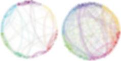 psilocybin_networks_660-2.jpg