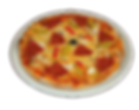 M70 - Pizza Salami.png