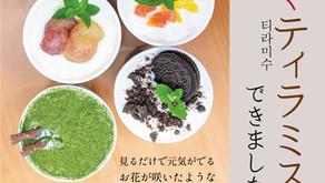 【新発売】花咲くティラミス販売中