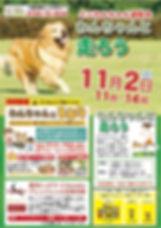 11.21イベント.はしろう&BBQ.jpg