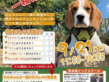 2019年9月6日(土)イベント情報 多頭飼いさんいらっしゃい!