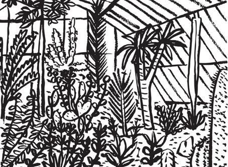 Kew Gardens Illustrations