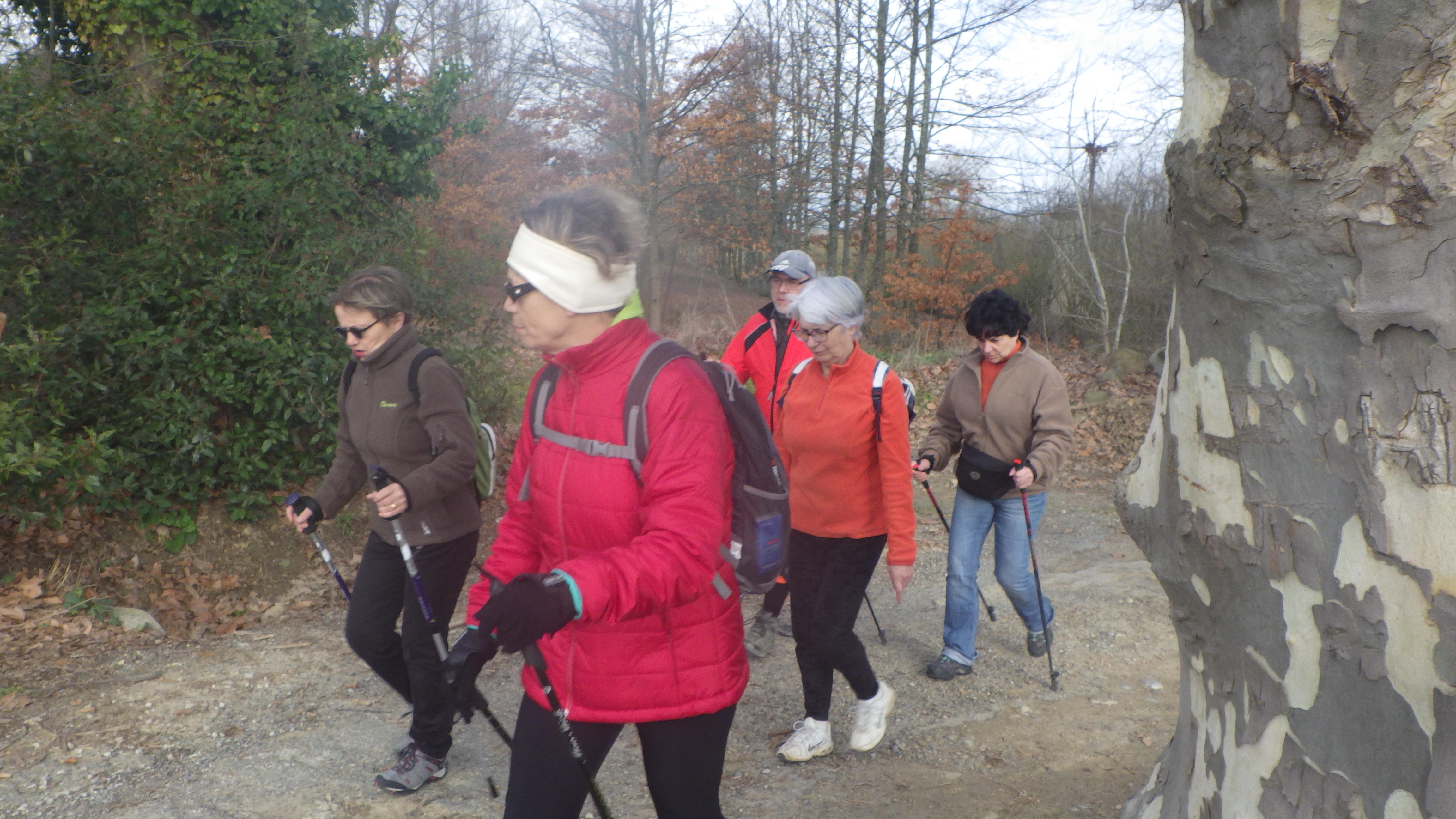 Trail 2018