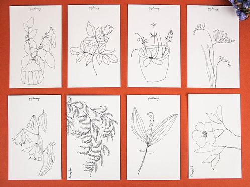 Lot de 8 cartes Fleurs