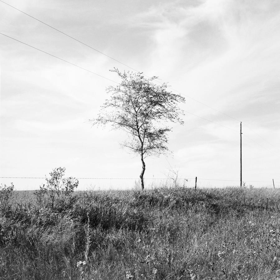 West of Big Mound Battlefield