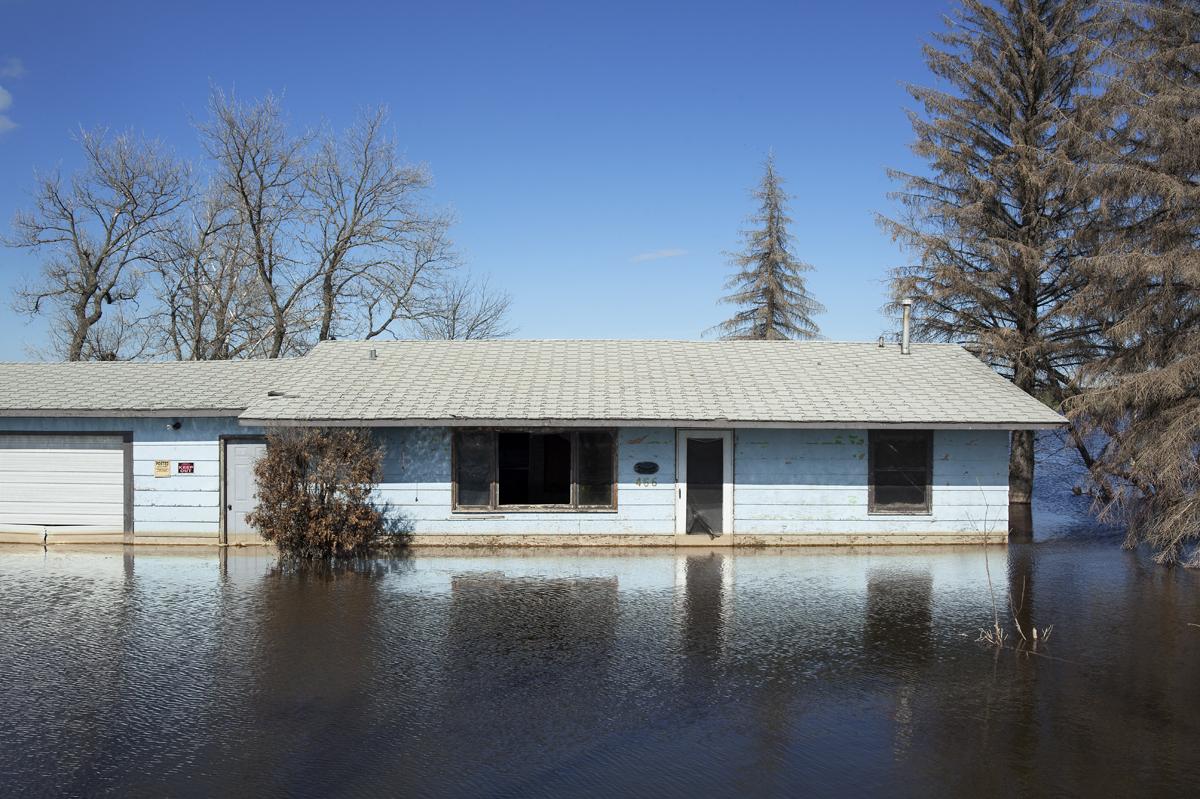 Rice Lake II