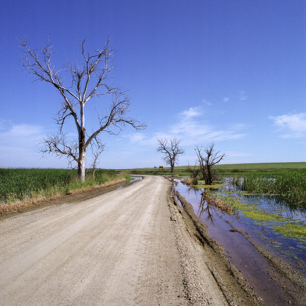 Water on Road
