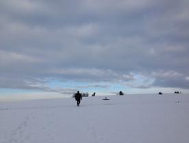 oder wanderungen im schnee