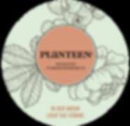 planteen_logo_fussz.png