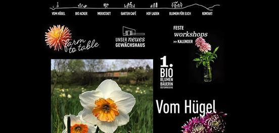 """""""Vom Hügel"""": Relaunch Website"""