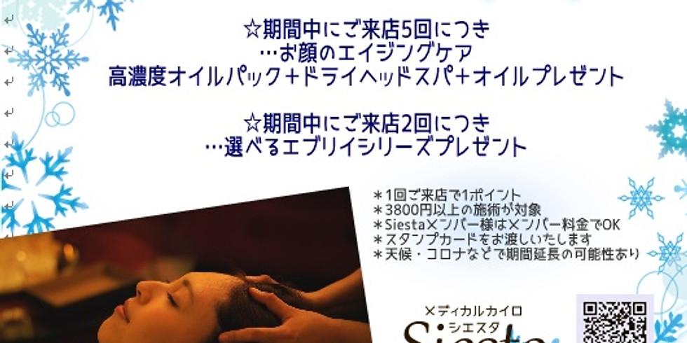 Siesta ゴー(5)トゥー(2)キャンペーン(´艸`*)