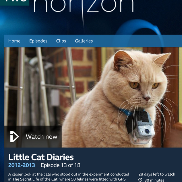 Little Cat Diaries - BBC Two UK