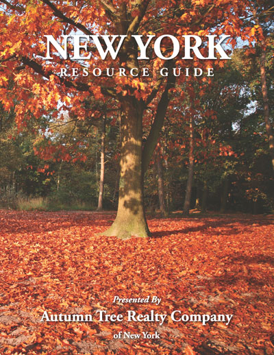 NY cover_Page_12