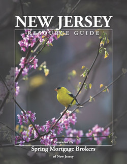 NJ cover_Page_02.jpg