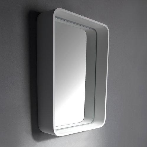 Mirror 450