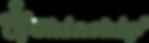 Skinship logo green.png