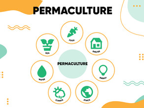 What is Permaculture Farming: A Simplified Guide