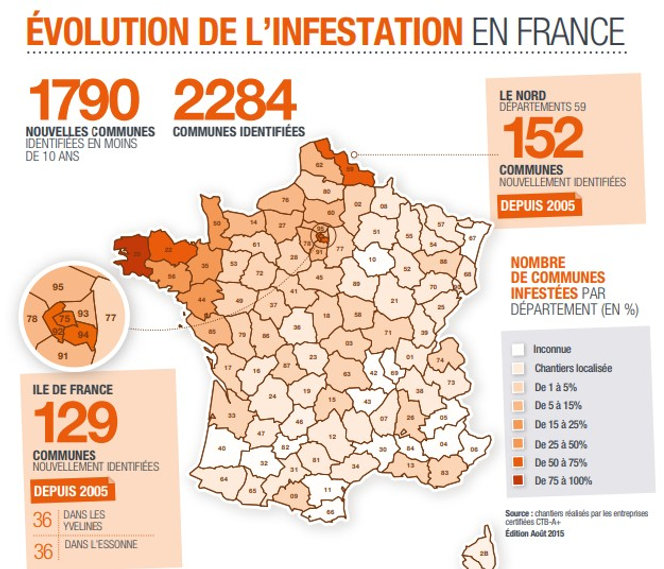 Carte-evolution-infestation-merule-en-Fr