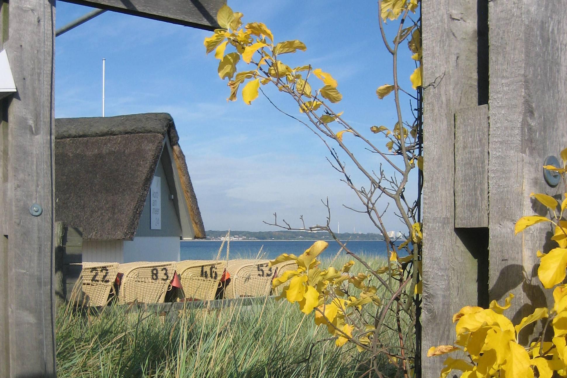 Ihr Blick auf die Ostsee