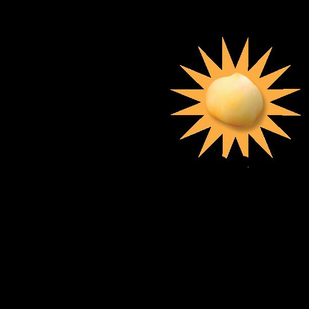 Amazing-chickpea-logo-black-copy