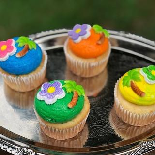 colorful cupcakes.jpg