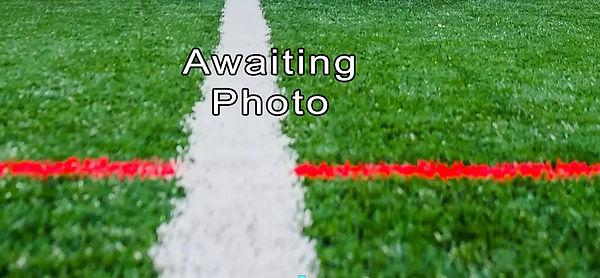 Awaiting.jpg