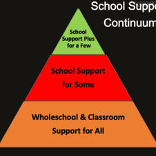 NEPS: School Support Continuum Guidelines