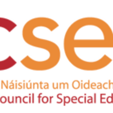 SESS Functional Language and Communication Resource