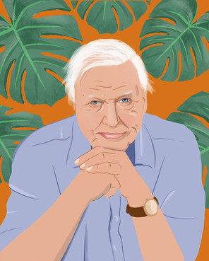 David Attenborough | Portrait