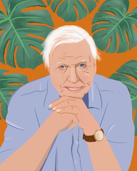 David Attenborough | Portrait