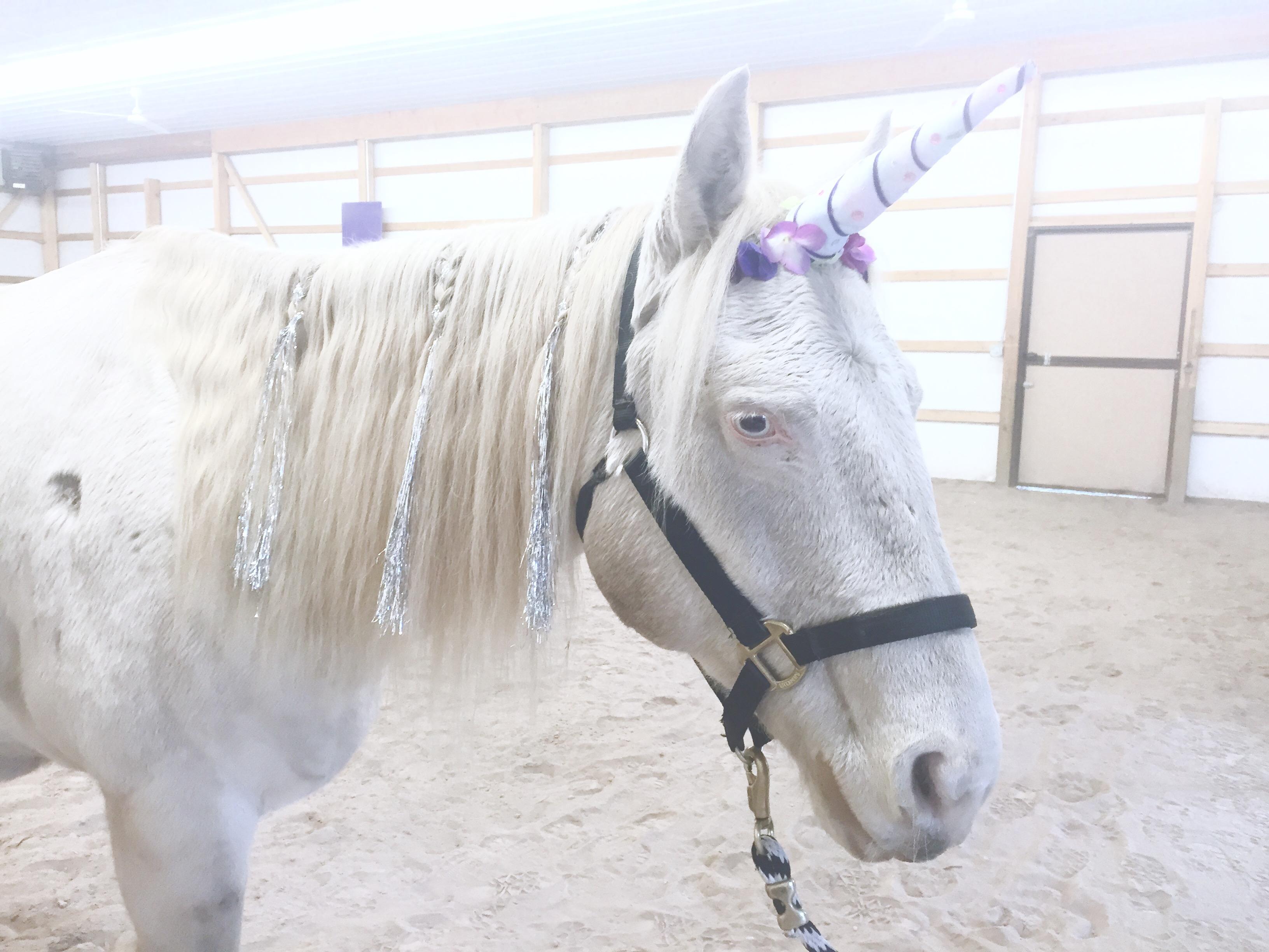 Unicorn Yogo