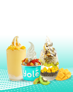 yole mobile header.png