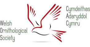 Welsh Ornithological Society Conference