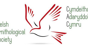 Welsh Ornithological Society Conference