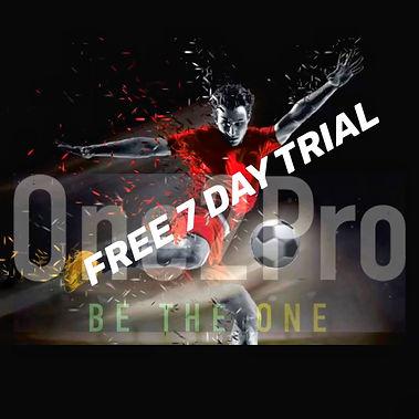 7 free trial (2).jpg